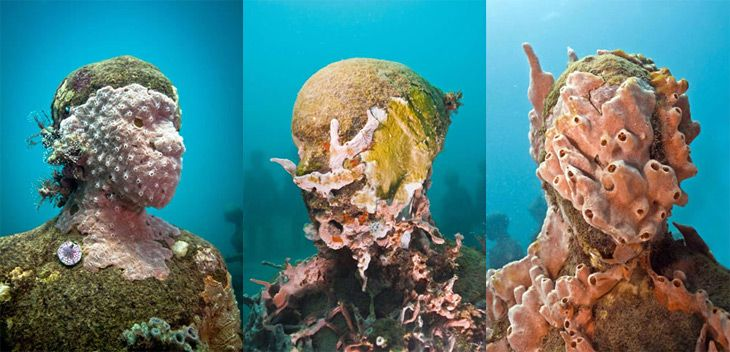 #sculpture #ocean Loving how this art is being taken over by nature!