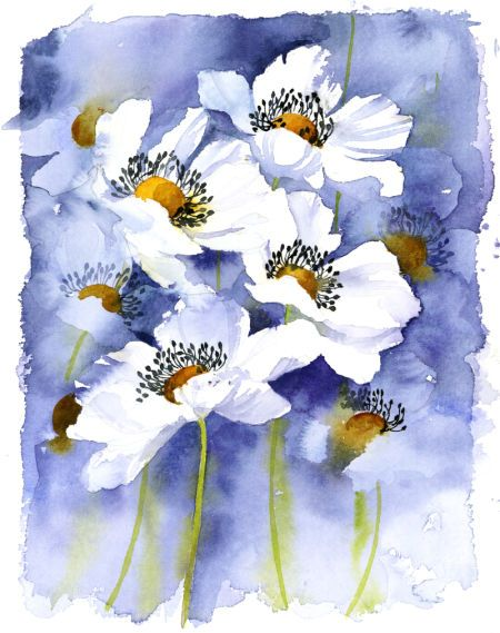 Watercolor - Rachel Mcnaughton - 517 - White Flowers.jpg