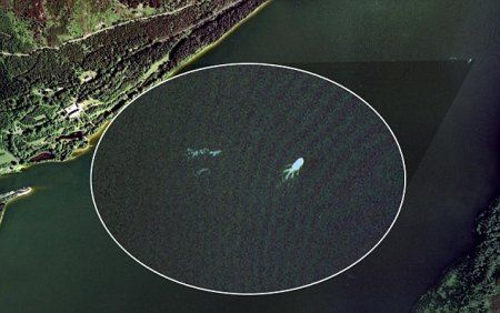 "A very big sea monster, most likely a giant squid, was found on google earth, the coordinates for this image is said to be from Latitude 57°12'52.13""N, Longitude 4°34'14.16""W."