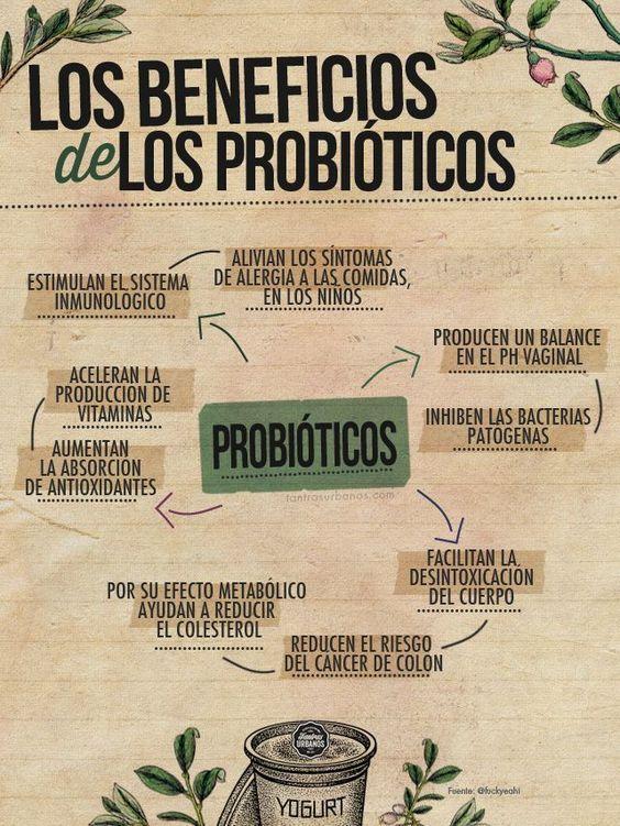 Beneficios para la salud de los probióticos. #probióticos #salud #infografía: