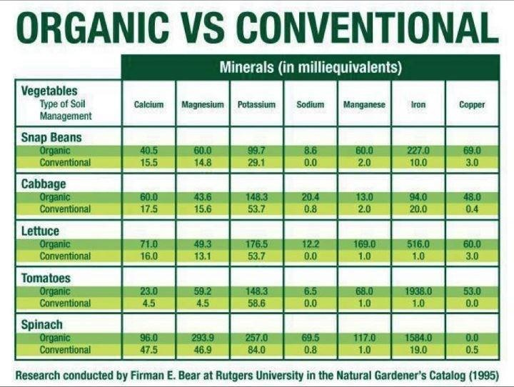 The Difference between Conventional and Organic Foods