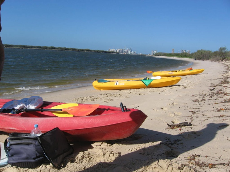 Australian Kayaking Adventures took us over to Wave Break Island beach to snorkel and feed the tropical fish