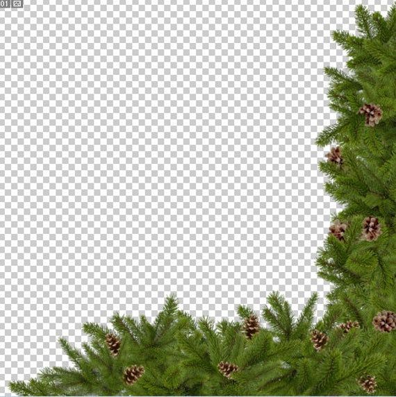 Christmas Tree Overlays New Year Clip Art Winter Branches Png Etsy In 2021 Easter Photography Props Backdrops Backgrounds Photoshop Overlays