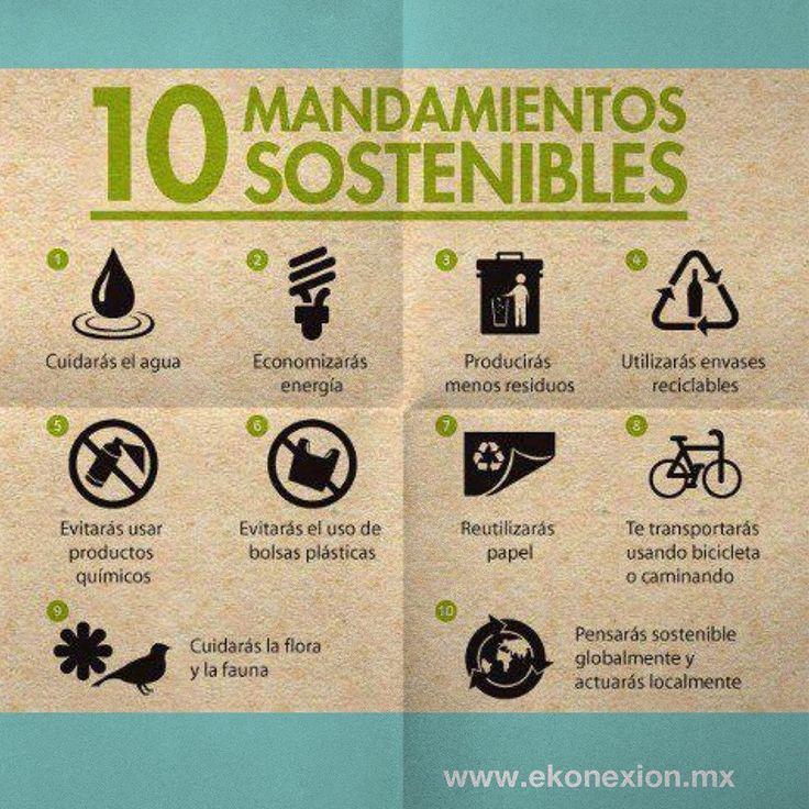 #Ayudemos al #medio ambiente con estos 10 mandamientos sostenibles