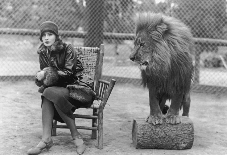 """Swedish-born actress Greta Garbo (1905-1990) sits in a chair next to """"Leo,"""" the lion mascot for MGM studios."""