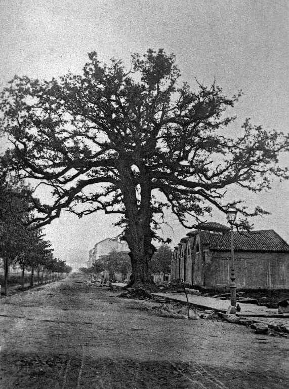 Calle Uria en 1879