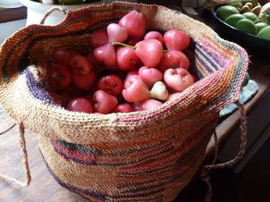 A Basket full of Wax Jambu