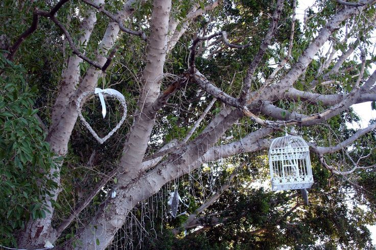 Bird cages & wicker hearts hung from trees.