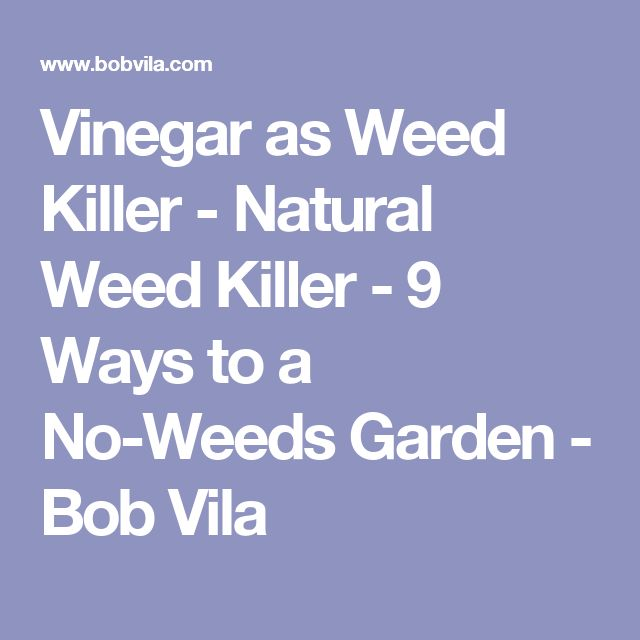Elegant Natural Ways To Kill Weeds With Weed Killer For Gardens Vegetable