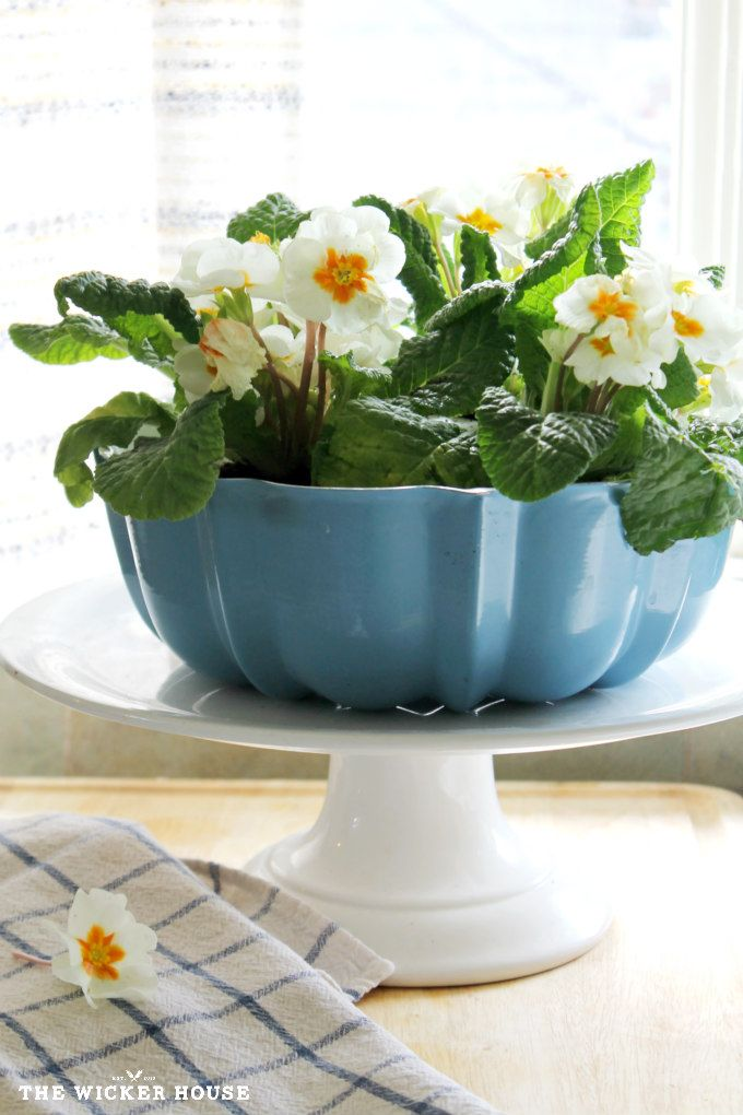 Bundt Pan Planter   The Wicker House