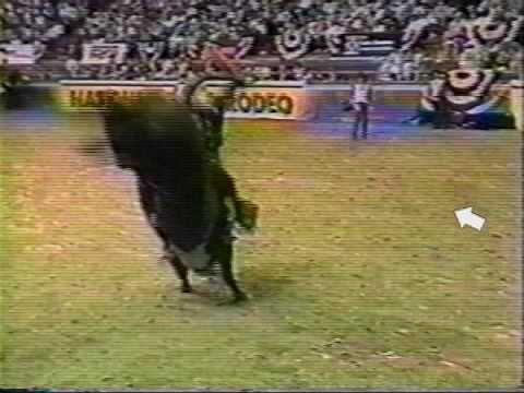 national gay bull riders assoiciation