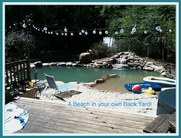 426 Best Images About Swim Pond On Pinterest Swim Pools
