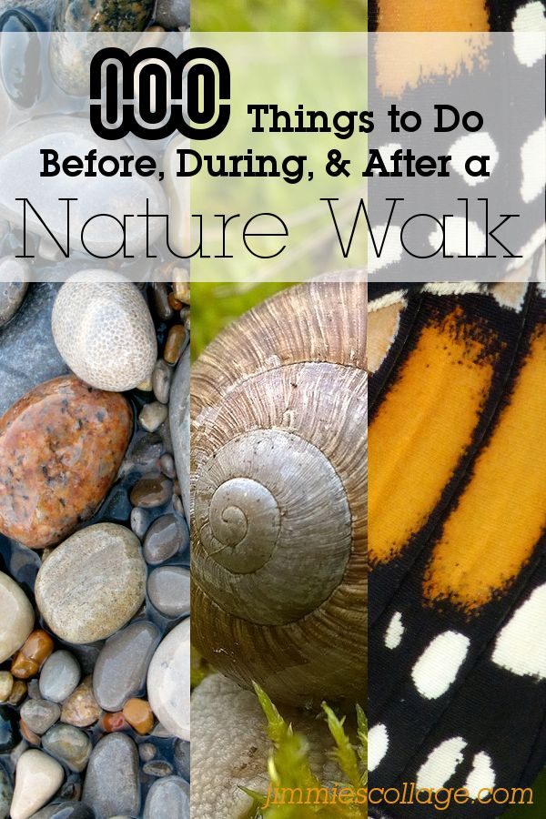 100 Things to do Before, During, and After a Nature Walk • Jimmie's Collage