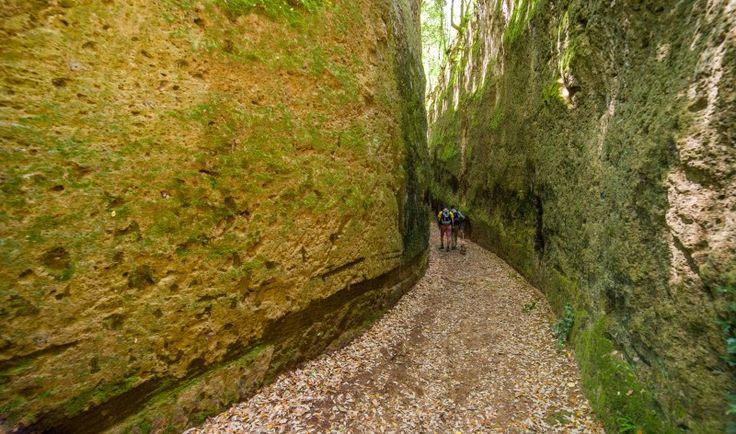 Un unicum su scala mondiale che è presente qui in Maremma nella zona delle Colline del Tufo tra Pitigliano, Sorano e Sovana. Parliamo delle Vie Cave etrusco-romane ovvero dei profondi canali ricavati incidendo fortemente la roccia vulcanica originate da un percorso sacro, nel quale, si ammirano ipogei funebri di rara bellezza La via cava di …