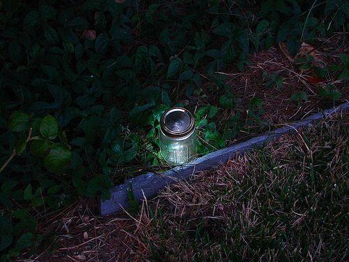 Best 25+ Led Garden Lights Ideas On Pinterest | Exterior Led Lighting,  Solar Led Garden Lights And Solar Lights