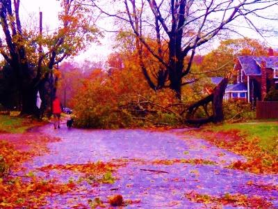 Hurricane Sandy's wrath in Wakefield, RI