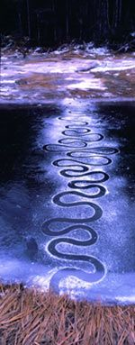 rivers and tides - Andy Goldsworthy