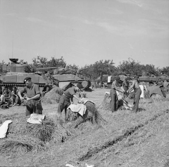 Sherman tank crews of 8th Armoured Brigade hanging out their washing in a cornfield near Vernon, August 1944. Vernon, the town that liberated itself in 1944 Normandy - a true tale of the French Resistance. http://www.normandythenandnow.com/vernon/