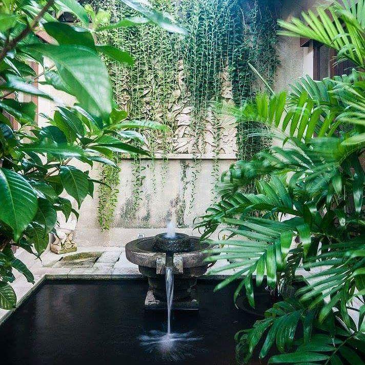 Courtyard pond at Villa Santai in the Bugis villa complex Drupadi Bali By Bali Landscape Company http://ift.tt/1QzTwns  #bestvilla #villaholiday #privatevilla #villasantai #bali #seminyak #pond #waterfeature #climber #tropical #tropicaldesign #garden #gardenideas #taman #landscape #landscapedesign
