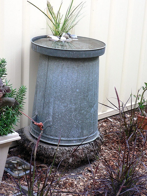 """hmmmm... this gives me the idea to experiment with flipping the lid over on my wildlife drinker water """"tank"""" (a 32-gallon Rubbermaid trash bin) ~ that would give the birds an alternative above-ground """"pool"""""""