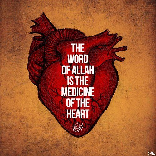 """""""The word of Allāh is the medicine of the Heart."""" Have you ever seen what happens to a fish out of water? It dies right? Same goes for the Heart. If a person doesn't perform Dhikr, then his/her heart will die and he/she will have no Imaan. Keep doing Dhikr In-Shaa'Allāh. Made by: Instagram 