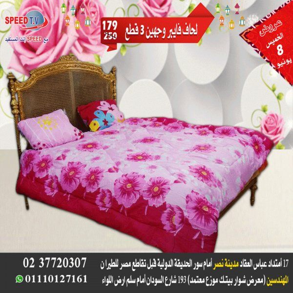 عروض سبيد تى فى فقط الخميس 8 يونيو 2017    Speed tv Egypt offers only Thursday 8 June 2017