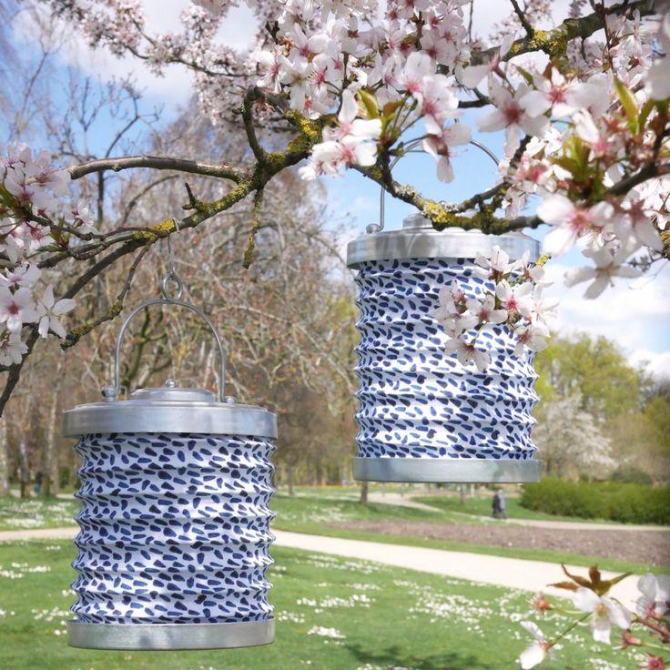 Les 143 meilleures images propos de terrasses et jardin for Arbre exterieur jardin