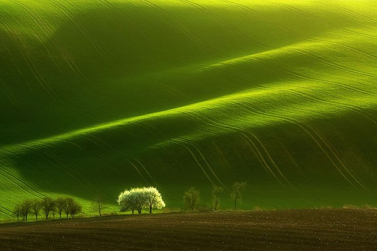 Artist Presents the Beauty of Moravian Fields Through Mesmerizing Landscapes