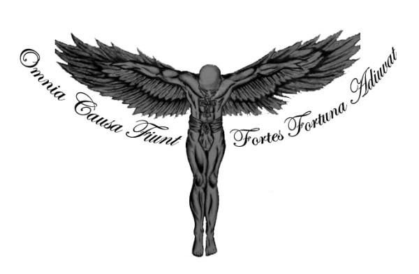 Omnia causa fiunt fortes fortuna Everything happens for a reason, fortune favors the brave...