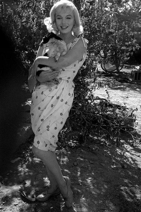 Marilyn Monroe sosteniendo en sus brazos a un cachorro