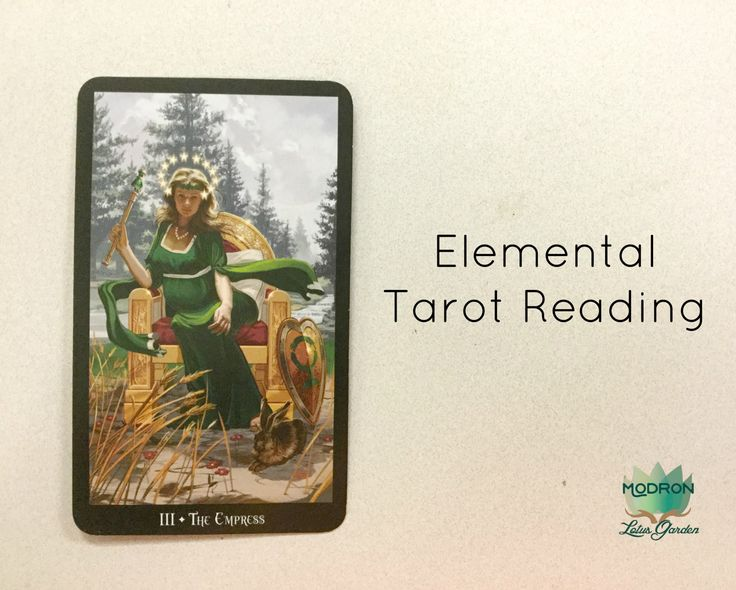 An Elemental Tarot Reading - Regain Balance in Your Life - Fast Psychic Readings - Email Tarot Readings - Intuitive Readings by ModronLotusGarden on Etsy
