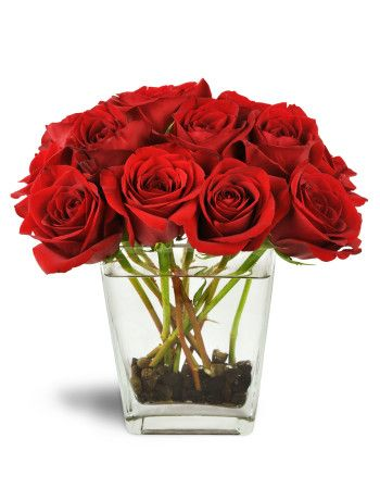 Marriage proposals. Anniversaries. Newborn bundles of joy. When the most special times of life happen, only the most gorgeous red roses will do! These huge, beautiful blooms are arranged perfectly in a lovely clear tapered glass vase. Serene river rocks add a modern twist to this classic floral gift for her.