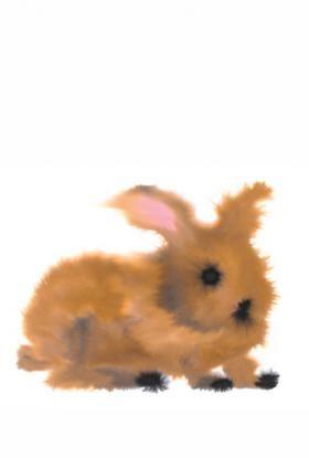 rop van mierlo rabbit