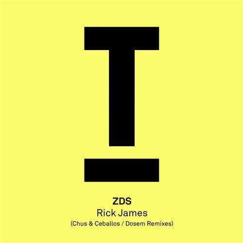 ZDS - Rick James (Chus & Ceballos Remix)