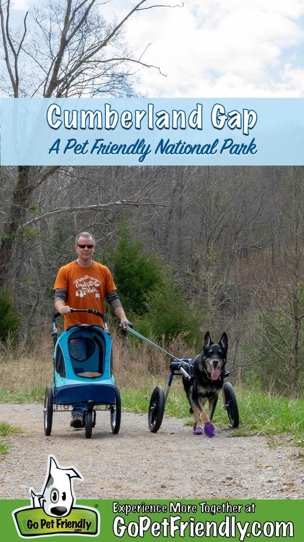 Cumberland Gap A Pet Friendly National Park Cumberland Gap Dog Friends Pets