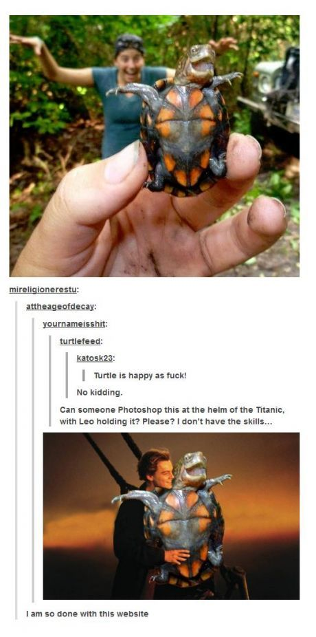 The happiest turtle in the world. I imagine that you would also be a happy turtle standing there with Leo...