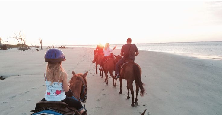 Golden Isles Carriage and Trail at Three Oaks Farm Offers family-friendly activities including horseback riding on Driftwood Beach, narrated horse-drawn carriage tours of the Historic District, and a large petting zoo. Camps, events, rentals, and wedding carriage services are also available. Multiple Jekyll Island locations:…