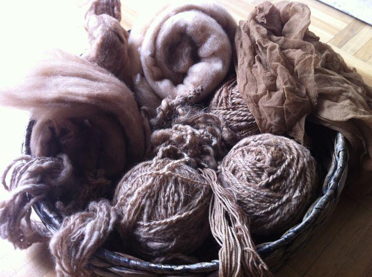 Verven met walnootbolsters is zo gemakkelijk. Geen aluin nodig. Bolsters in regenwater laten weken en later de wol erbij doen, er zit een oneindig scala van geel - beige - bruin - zwart in die verrukkelijke walnootboom. GRANDES TEINTES!!!