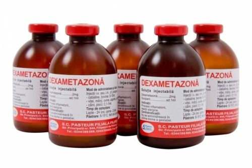 Dexametazona 50 ml