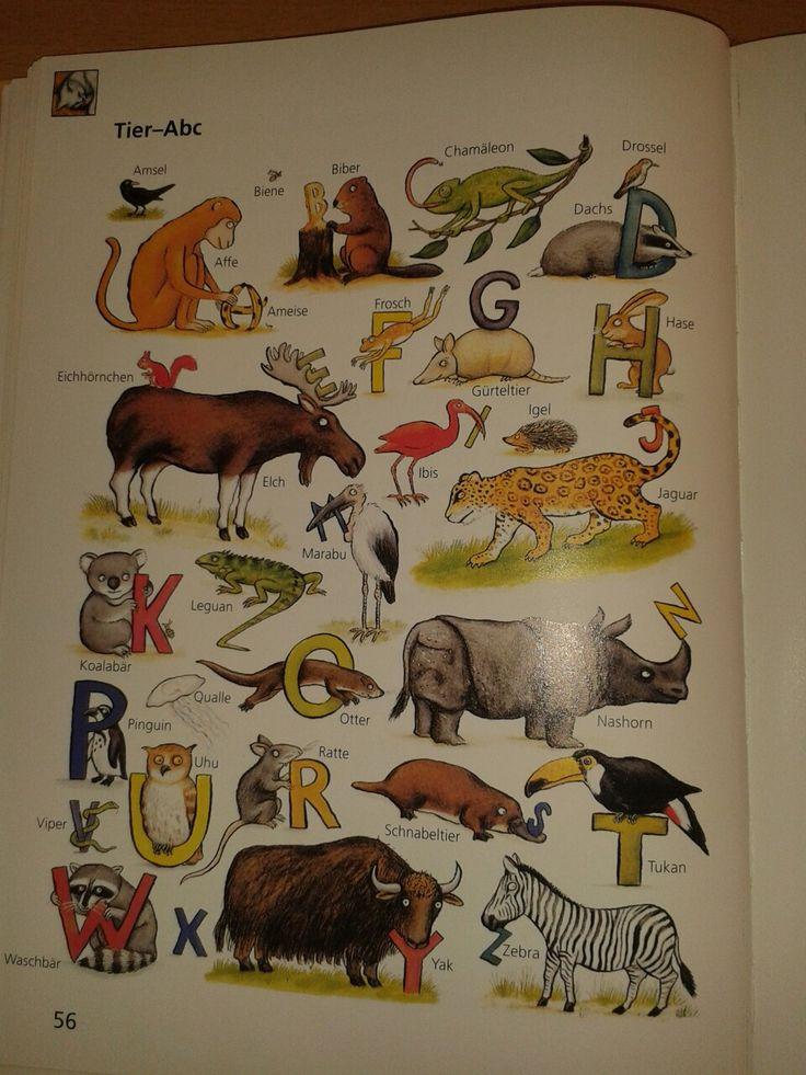 64 besten daz Tiere Bilder auf Pinterest | Deutsch lernen, Sprachen ...