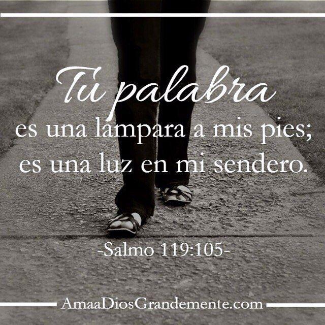#AmaaDiosGrandemente 5 - Martes #AmaaDiosGrandemente #Salmo119…