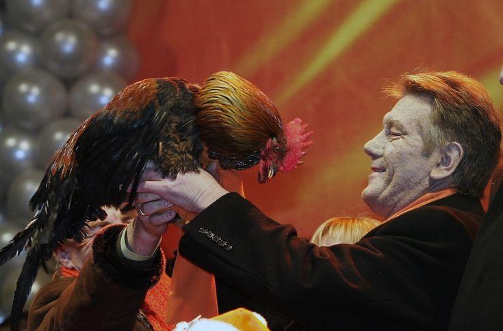 Viktor Yushchenko, leader del partito di centro-destra Nostra Ucraina, con un gallo durante un evento di campagna elettorale a Kiev, primo gennaio 2005. Il 26 dicembre del 2004 Yushchenko era stato eletto presidente del paese, carica che assunse il 23 gennaio 2005. (MAXIM MARMUR/AFP/Getty Images) Politici e animali - Il Post