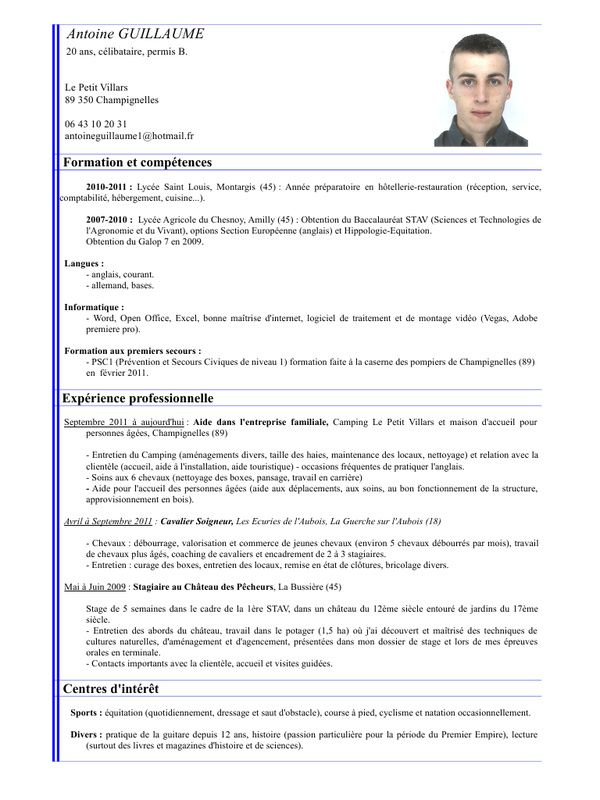 Cv Terminale Science Technologie Permis B Preparatoire