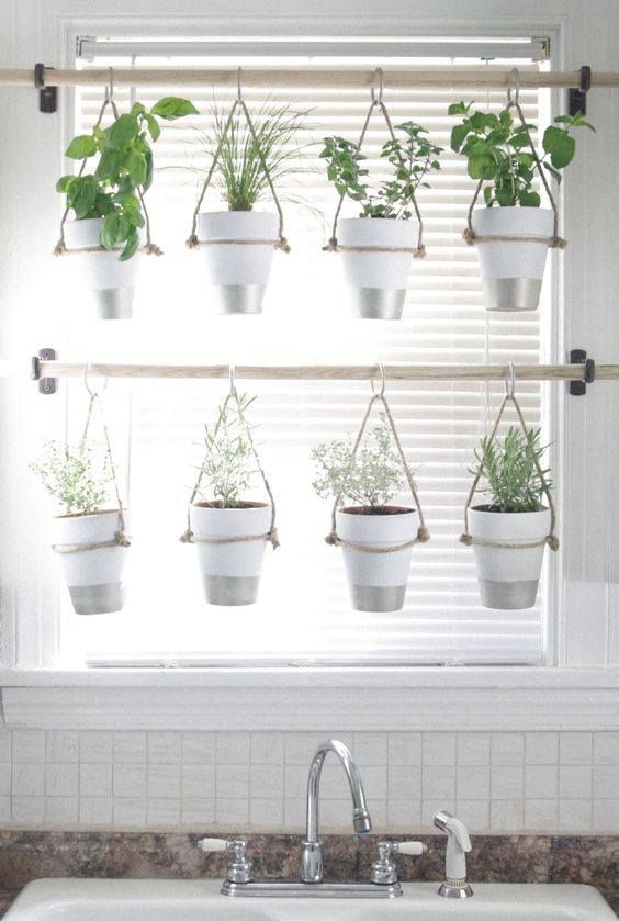 Planted window. Great place for herbs.