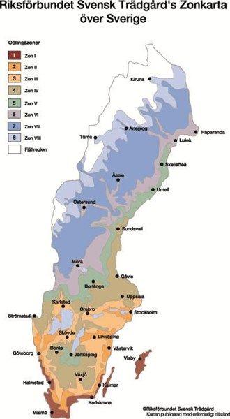 Zonkarta - vägledning till växtval | Blomsterlandet.se