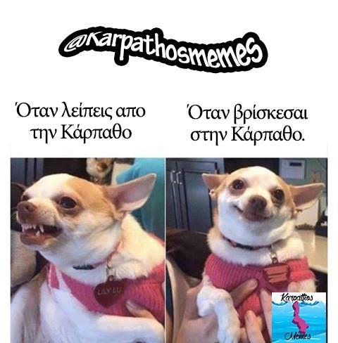 #karpathos #memes #karpathosmemes #greek #quotes #island