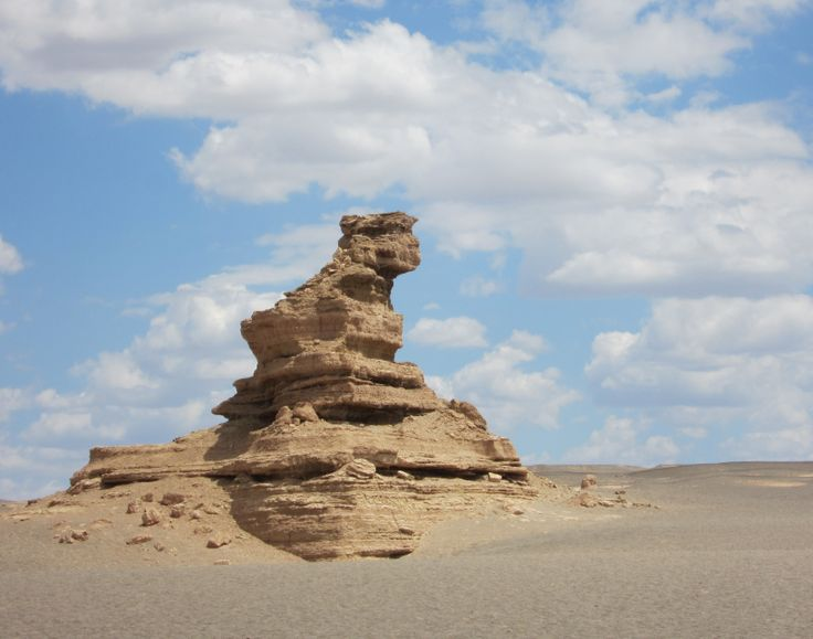 standing on guard in the Gobi Desert