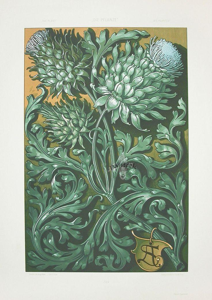 """""""Artichokes"""" from Anton Seder Die Pflanze Art Nouveau Prints 1890"""
