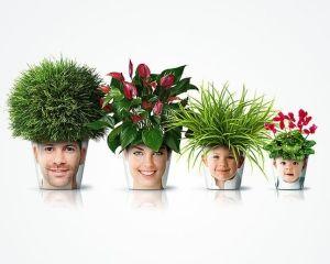 """""""Family"""" flower pots"""