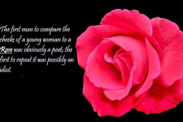 Rose Day Shayari for him/her